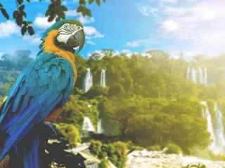 Pacote Foz do Iguaçu - 2022