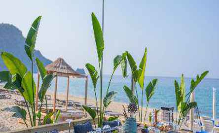 PALMİYE BEACH HOTEL
