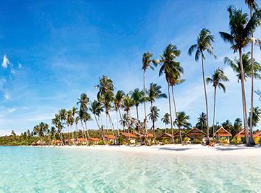 Top Resorts