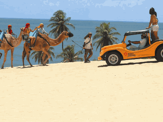 Pacote de Viagem Natal + Pipa + Genipabu - 2022 e 2023