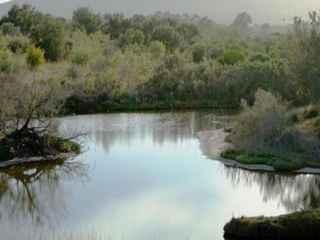 Percurso pelo Espaço Natural da Foz do Guadalhorce