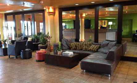 Holiday Inn & Suites Tampa North Busch Gardens Area