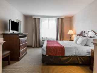 Comfort Inn & Suites East Greenbush - Albany